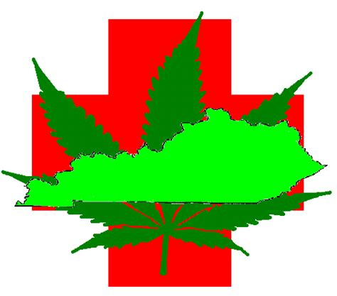 louisiana contacts links and more a medical cannabis kentucky contacts links and more a medical cannabis