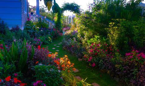 imagenes de jardines de rosas de colores banco de im 193 genes jard 237 n con miles de flores de colores