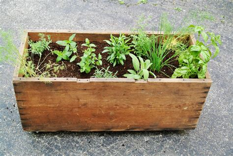 diy herb garden box 10 adorable diy planter box ideas