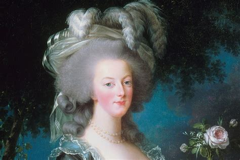 antoinette hairstyles the political power of antoinette s hair jstor daily
