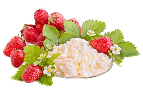 Strawberries And Cottage Cheese by Strawberries And Cottage Cheese Stock Photo Image 31500654