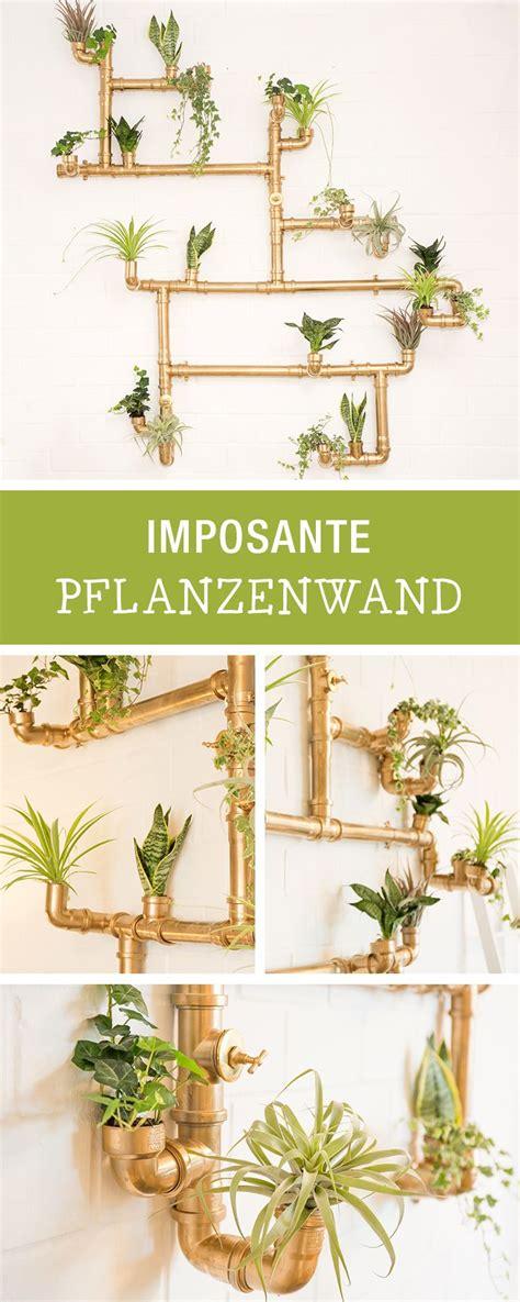 Pflanzenwand Selber Bauen by Pflanzenwand Selber Bauen Pflanzenwand Selber Bauen