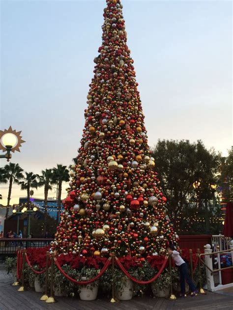 36 best disneyland at christmas images on pinterest