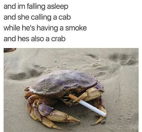 Crab Meme - the best crab memes memedroid