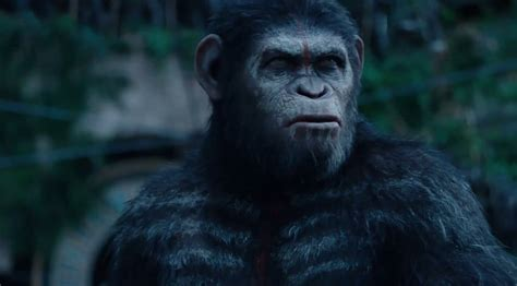 awn of the planet of the apes new tv spot for dawn of the planet of the apes