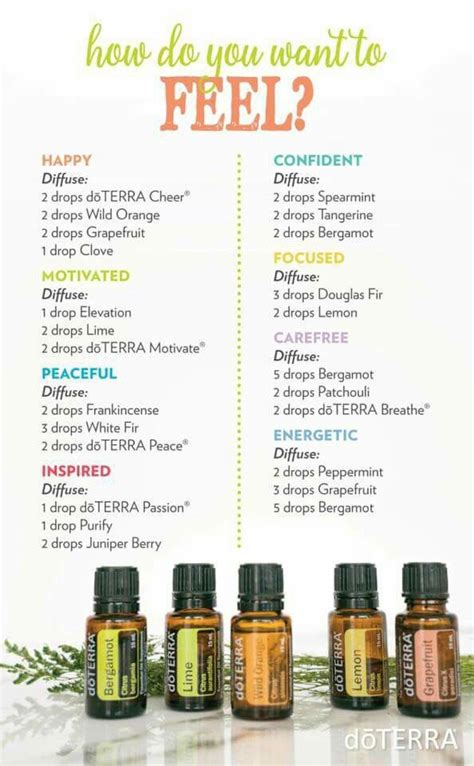 Diffuer Recipes For Detox by 12 Best Using Living Essential Oils