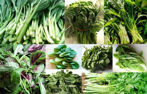 vegetables used in asian cooking vegetables leafy greens the woks of