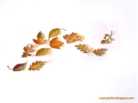 leaves wall decor leaf wall decor idea mytutorlist