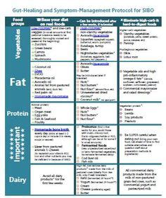 How For Detox Symptoms When Strictly Scd Diet by 1000 Images About Sibo On Diet Paleo Diet