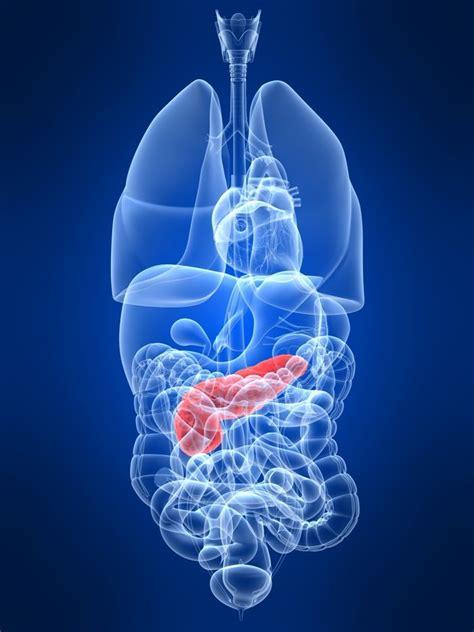 pancreatitis diet pancreatitis diet acute chronic pancreatitis