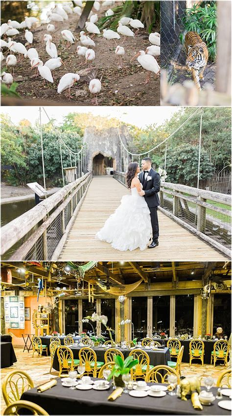 Wedding Venues West Palm by Unique Wedding Venues Married In Palm