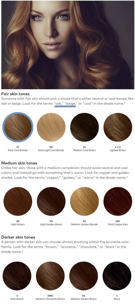 neutral brown hair color chart 152 best images about hair ideas on pinterest partial