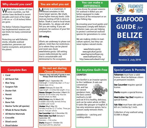 Mba Seafood Pocket Guide by Seafood Guide To Belize Ambergris Caye Belize Message Board