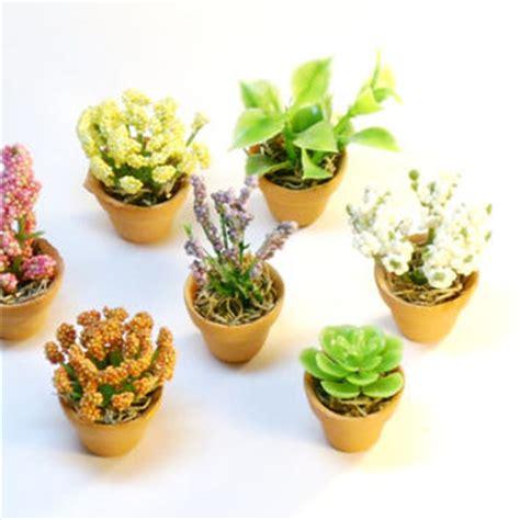 miniature plants for sale shop miniature dollhouse fairy garden on wanelo