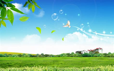 wallpaper in background pleasant green sky background wallpapers