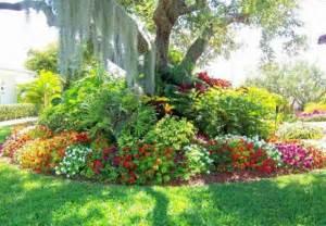 beautiful flowers tropical garden ideas beautiful homes