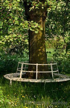 tree ring bench 1000 images about tree benches on pinterest tree bench