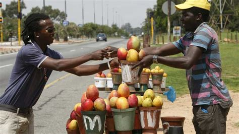 layout artist jobs in south africa jobs 2013 informal sector shows sa who s boss business
