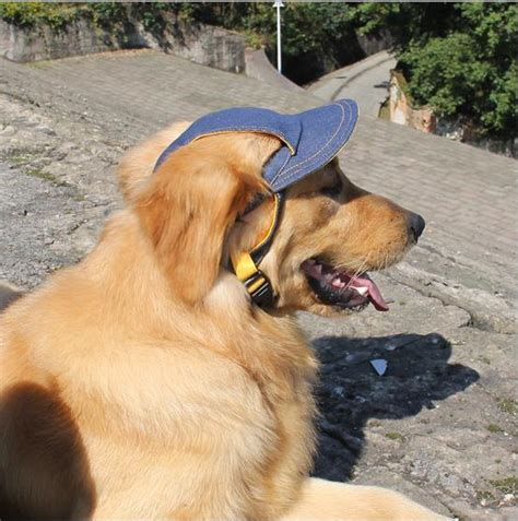 Vacation Pet Pet Pet Product 2 by 5pcs Pet Sunshade Baseball Cap Jean 2 Size Travel Hats