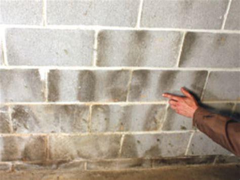 sealing basement walls waterproofing basement concrete walls sealing basement