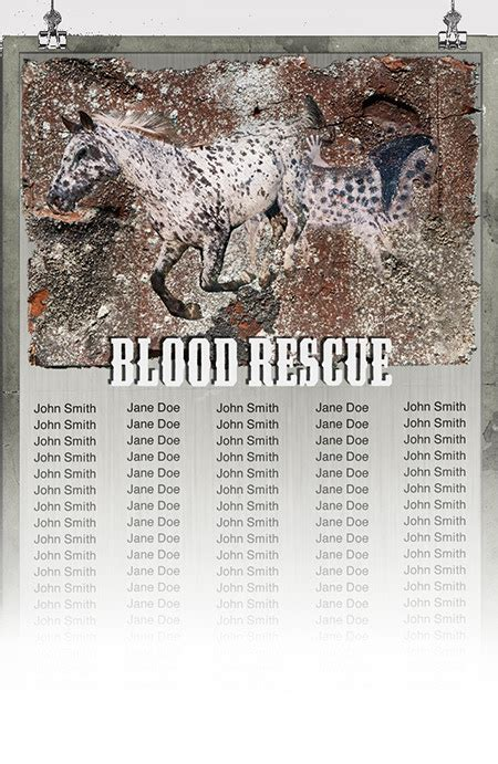 Blood Considers Adoption 2 by Blood Rescue By Eric L Hansen Kickstarter