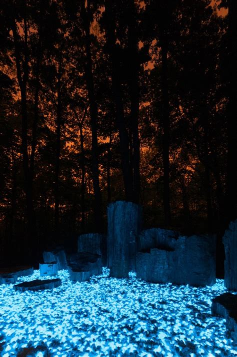 Glow Rocks Garden Glow Rocks Macbeth Pinterest