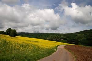 Spring Landscape Spring Landscape