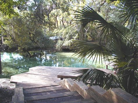 Ocala National Forest Cabin Rentals by Forest Cabins Ocala National Forest Cabins For Rent