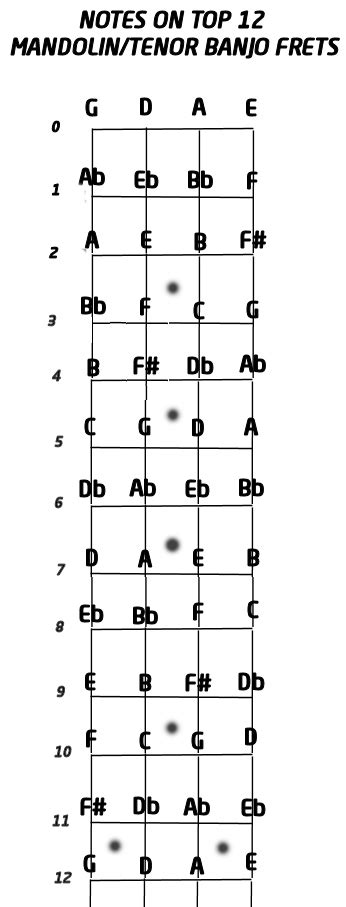 chart of notes on a mandolin tenor banjo mandolin gdae