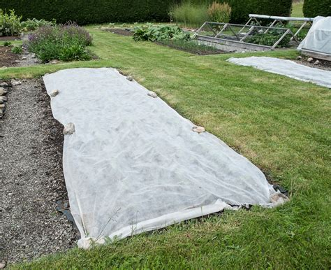 Garden Row Covers by Agribon Ag 19 Row Cover Cut To Length 10 Foot Width Using