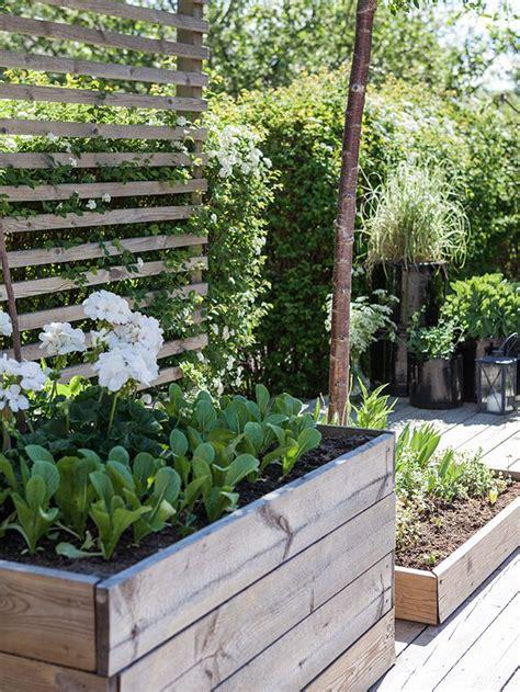 Balkon Sichtschutz Pflanzen 170 by Hochbeet Mit Sichtschutz Rankelhilfe Garten