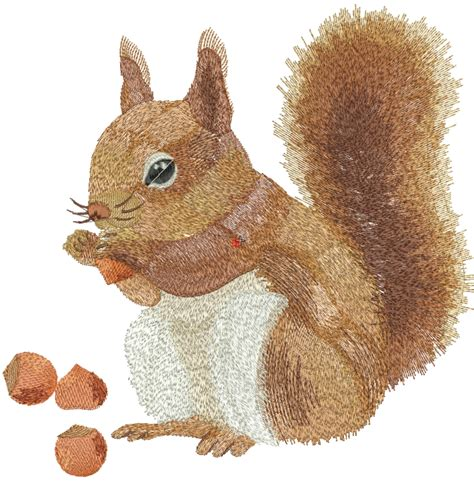 free applique design squirrel free embroidery design free embroidery designs