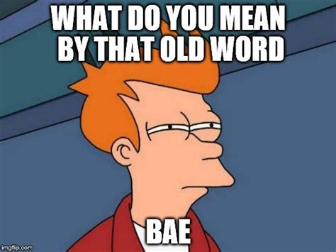 Meaning Of The Word Meme - futurama fry meme imgflip
