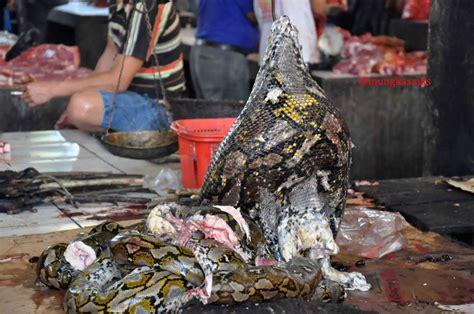 life  love   leisure pasar uji nyali