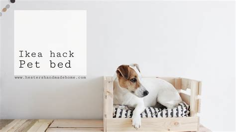 ikea dog ikea hack dog bed youtube