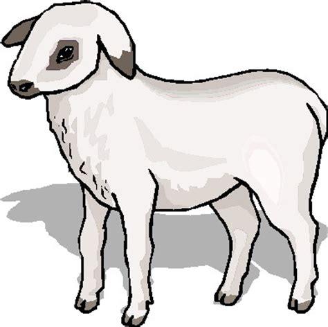 lamb clipart clipartion.com