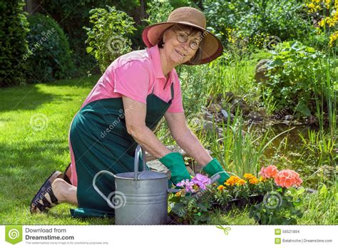 Is Working In The Garden by Middle Aged Working In Garden Stock Photo