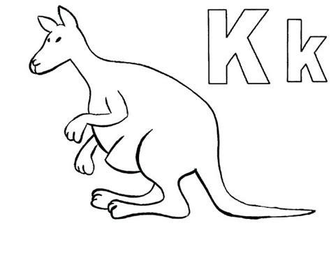 K Kangaroo Coloring Page by Kangaroo Picture To Color Sendflare Co
