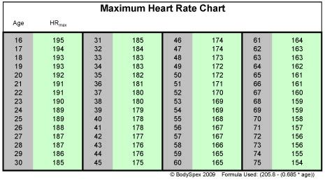 weight loss zone vs cardiovascular zone target cardio rate rate zones