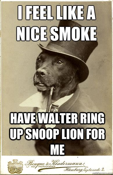 Nice Ass Memes - i feel like a nice smoke have walter ring up snoop lion