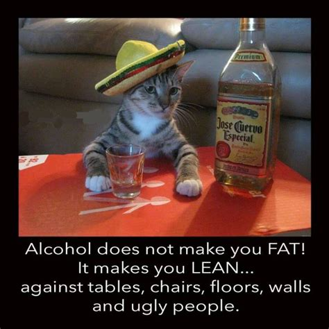 Funny Alcohol Memes - alcohol makes you lean