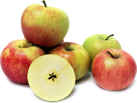 Apple To Apple   elias market apple jonagold per lb