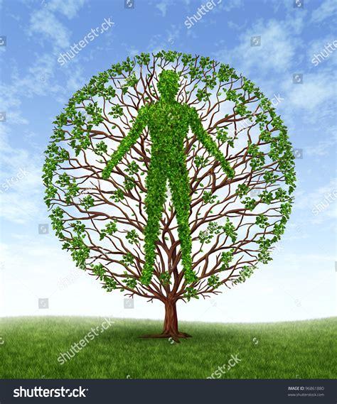symbol of growth human growth development personality development