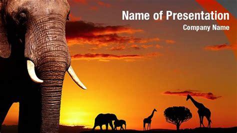 african wild animals powerpoint templates african wild
