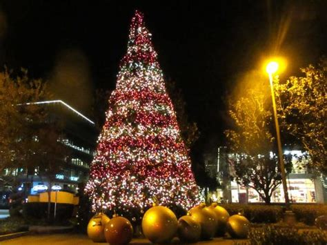 christmas tree santana row san jose ca picture of
