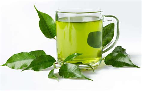 Teh Green Tea 5 reasons that green tea benefits weight loss fitness tycoon