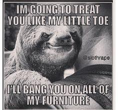 dirty sloth images  pinterest creepy sloth