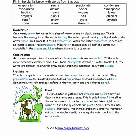 Cycles Worksheet Answers by The Water Cycle Worksheet Answers Worksheet Resume