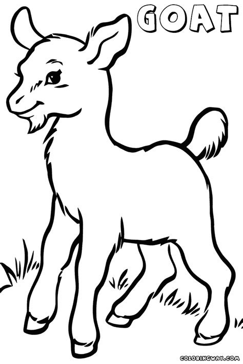 goat coloring pages baby goat coloring page supercoloringcom sketch coloring page
