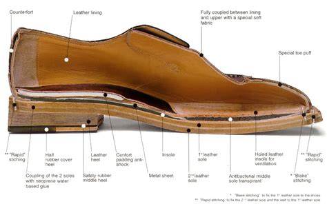 The Shoe Edit Cross Section